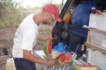 Fresh Watermelon from yesterday's market
